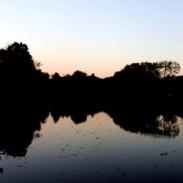 Tenney Park