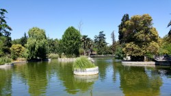 Pedal boat boat pond at Quinta Normal.